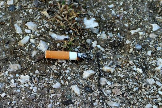 cigarette-butt-238161_1920