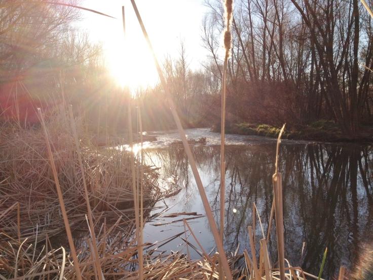 sun-over-river