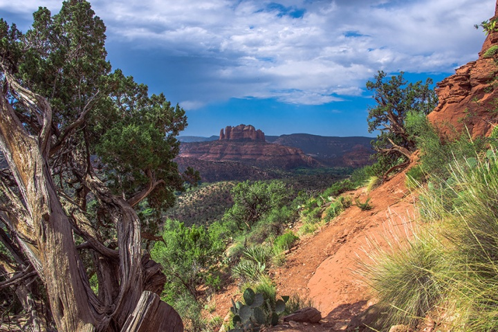 Hiking-Trails-in-Sedona-Airport-Loop-Trail