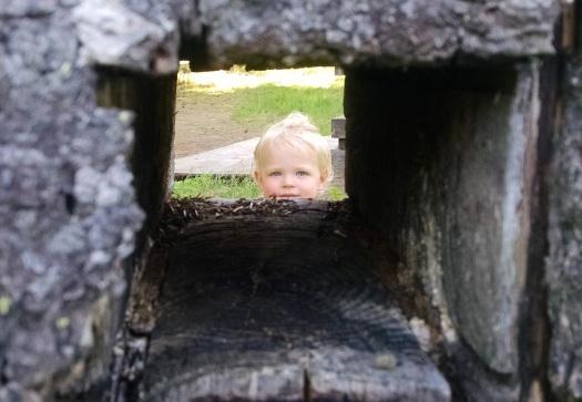 baby in a box.jpg
